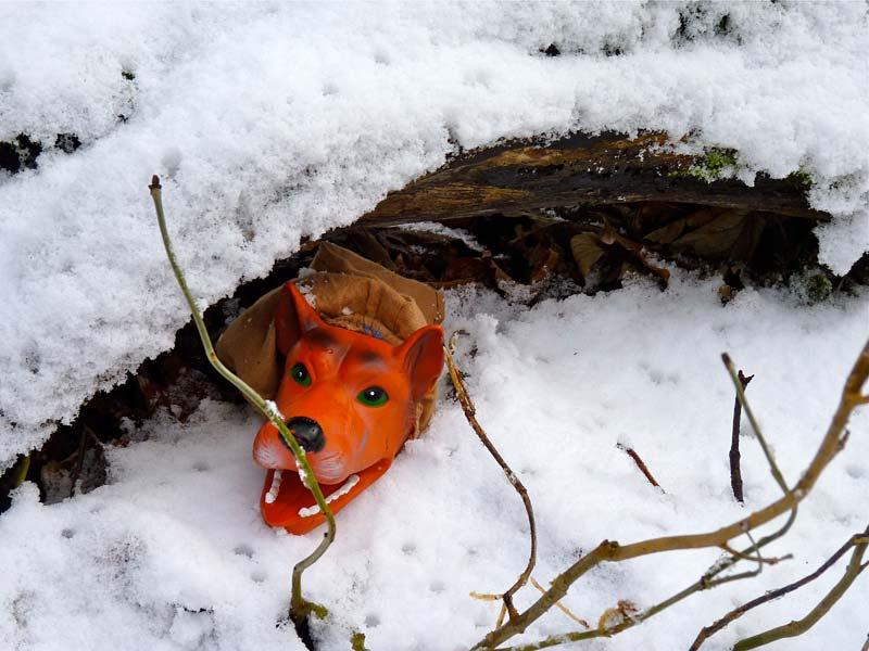 Märchenfiguren besuchen den Märchenwald